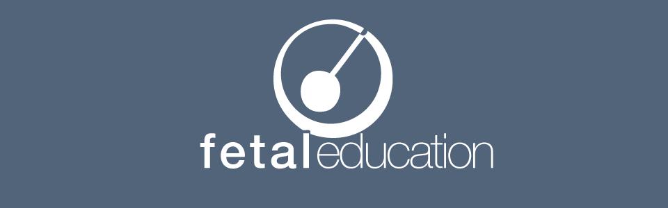 Fetaleducation – unsere Fortbildungsplattform